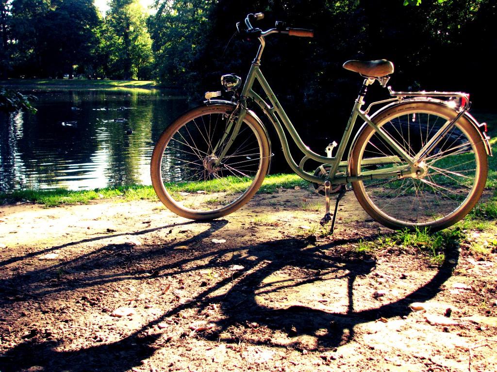 fahrrad deko blumen