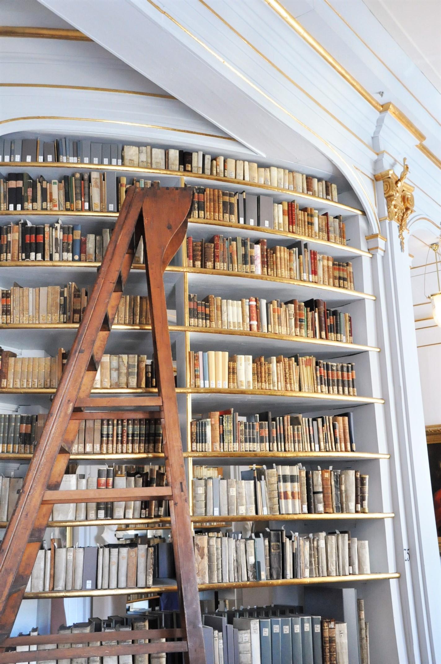 Historischer Stadtrundgang durch Weimar - Duchess Anna Amalia Library - (11)