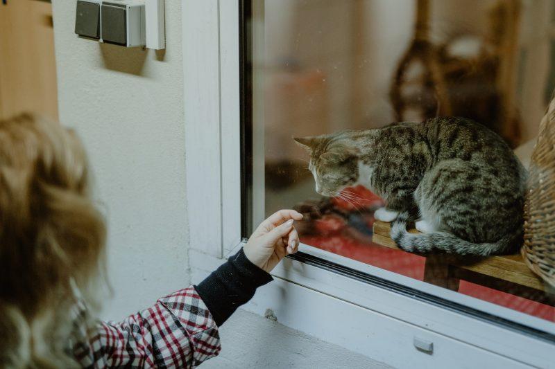 GnadenhofLossa-Vintage and Charity - Tierschutz-Spendenaktion (23)